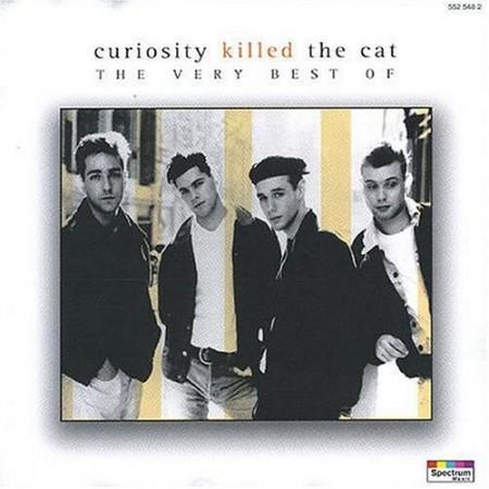 Curiosity Killed The Cat - Misfit